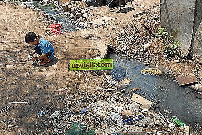 Основные санитарные условия