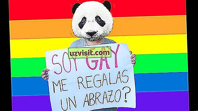 хомофобията
