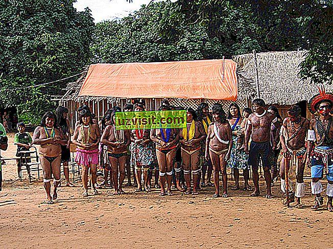 allgemein: Xingu