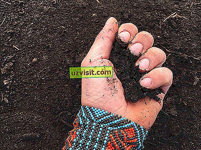 общ - Значение на компостирането