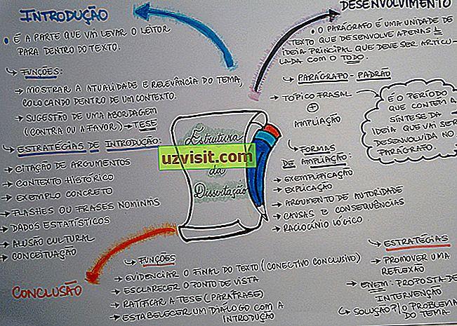 dissertazione - lingua