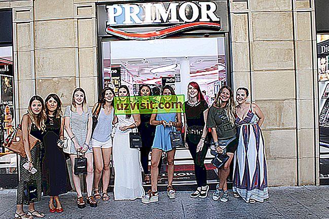 bahasa: Primor