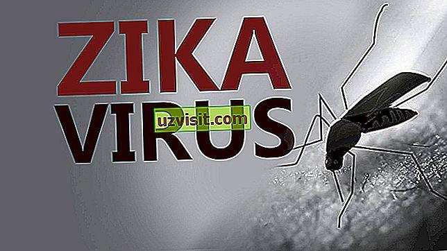 Zika - medicina