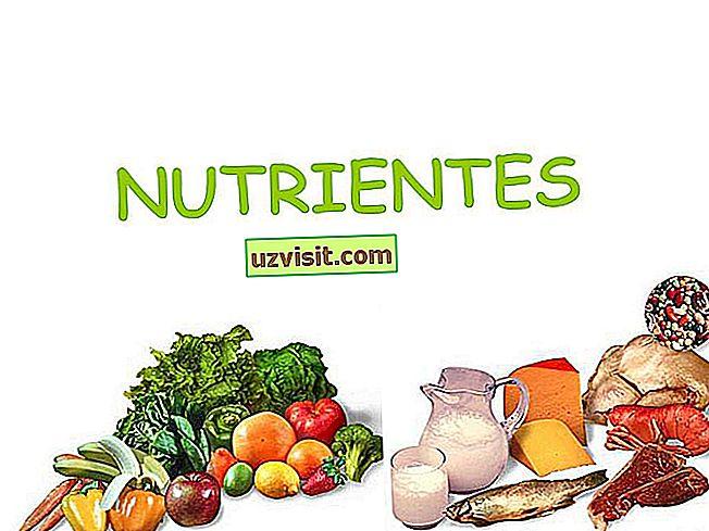 Maistinės medžiagos - medicina