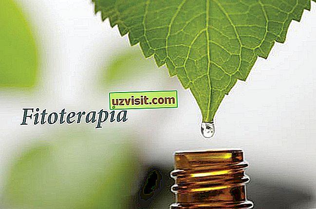 medicina - Biljni lijek