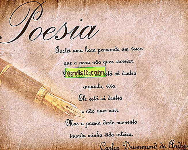 Poezja - poezja