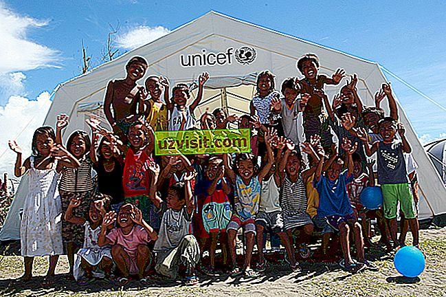 UNICEF - kratice